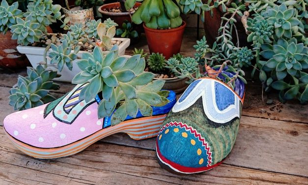 Upcycling and Repairing Ideas for Garden Decor